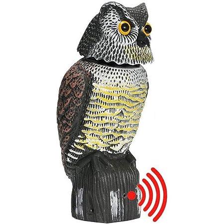 AMILIEe Hibou Decoy Rotatif /à 360 degr/és pour effrayer Les Oiseaux /épouvantail Statue de Chouette R/éaliste Effrayant Sons /& Faux Hibou Ext/érieur Indestructible Oiseaux pour Patio Cour Jardin