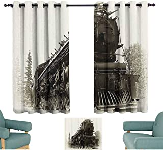Steam Engine Windshield Curtain Antique Northren Express Train Canada Railways Photography Freight Machine Print for Living, Dining, Bedroom (Pair) 55