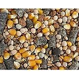 Karpfenhans Partikelmix Super Karpfen Partikel mit Melasse 1 kg Groundbait