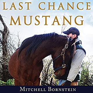 Last Chance Mustang cover art