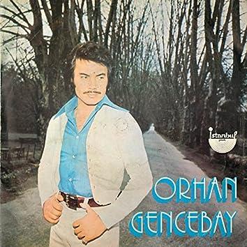 Sevenler Mesut Olmaz (45'lik)