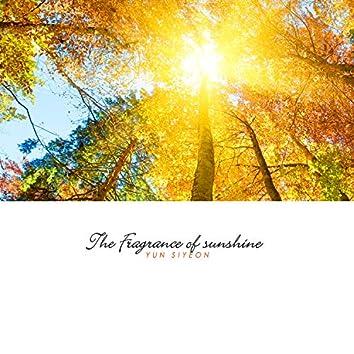 The Fragrance Of Sunshine