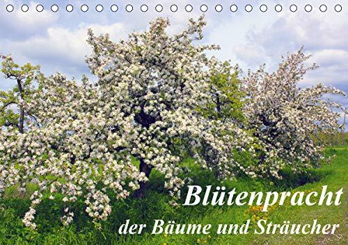 Blütezeit der Bäume und Sträucher (Tischkalender 2021 DIN A5 quer)