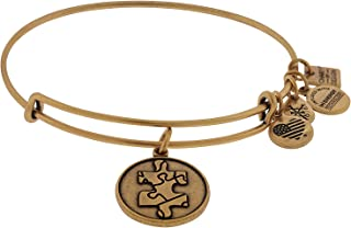 Alex and Ani Women's Piece Of The Puzzle Charm Bangle Rafaelian Gold Finish Bracelet