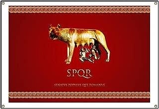 CafePress Roman Design Vinyl Banner, 44