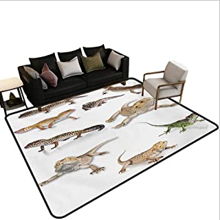 Household Decorative Floor mat,Colorful Staring Leopard Gecko Family Image Primitive Reptiles Wildlife Art Print 6'6