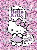 Buscando a… Hello Kitty.