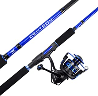 Best king salmon fishing pole Reviews