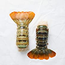 Northern Australian Lobster Tails (12/14 oz. per tail)(4 Tail) - Overnight Shipping Monday-Thursday