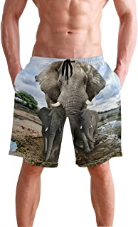 elephant swimming trunks