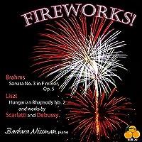 Fireworks! by Barbara Nissman