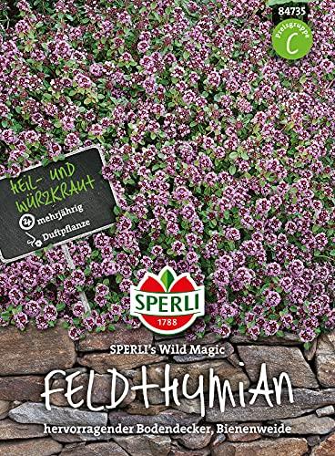 84735 Sperli Premium Thymian Samen Wild Magic | Samen Thymian | Thymian Samen Mehrjährig | Thymian Pflanze Samen | Kräuter Samen