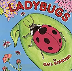 Ladybugs by Gail Gibbons