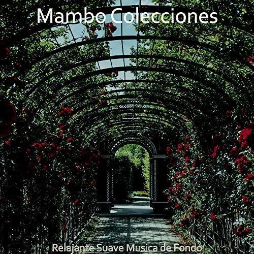 Mambo Colecciones