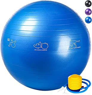 RACINESS Exercise Ball Birthing Ball 65 cm,Stability...