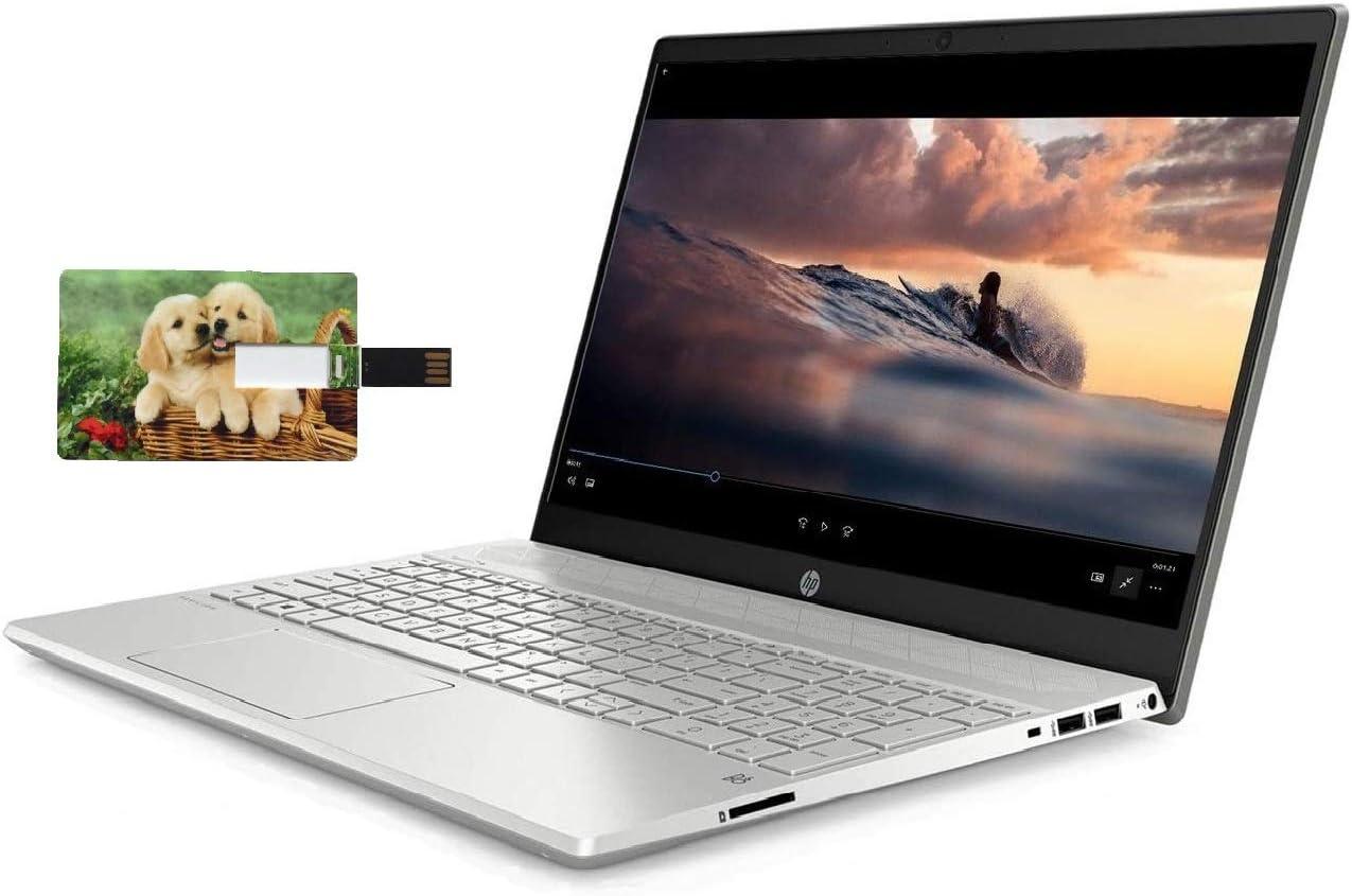 HP Pavilion 15 Business Laptop Computer