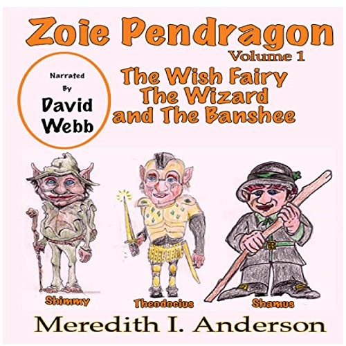 The Wish Fairy The Wizard and The Banshee audiobook cover art