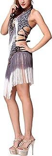 Qianliniuinc Women Professional Latin Dance Dress - V-Neck Tassel Samba Dances Salsa Dresses
