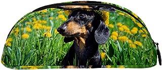 TIZORAX Dandelions Ghirlanda bassotto di cane in campo matite, astuccio per cancelleria, portapenne, astuccio per cosmetic...