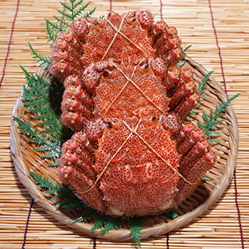かにのマルマサ 北海道産 ゆで毛蟹 300g 3尾セット 未冷凍 冷蔵品