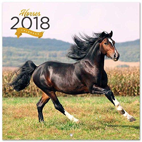 Grupo Erik editores-kalender 2018 30 x 30 paarden