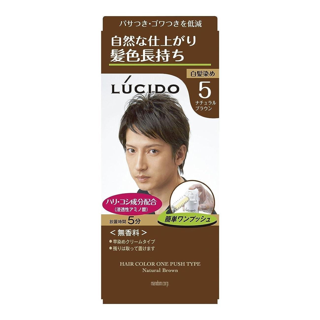 【マンダム】ルシード ワンプッシュケアカラー 5 ナチュラルブラウン 1剤50g?2剤50g ×10個セット