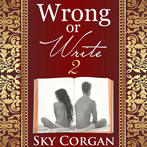 Wrong or Write 2 audiobook cover art