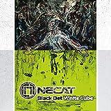 Black Dot White Cube