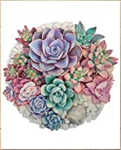 Bhhcr Paint by Numbers Digital Painting Digital Hand-Painted Anime Succulent Plants(40X50Cm Frameless)