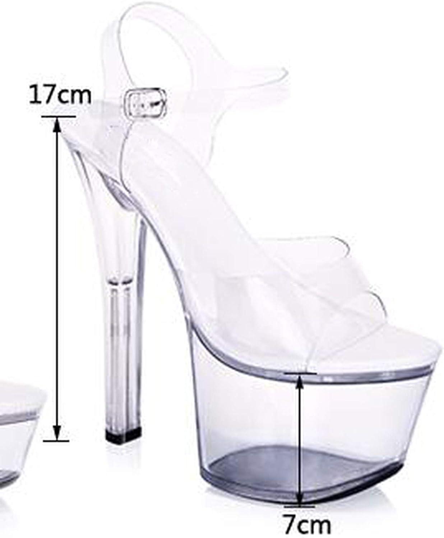 Summer Ankle Strap Sandals Sexy Woman 15 cm Thin High Heels Transparent Platform Pumps