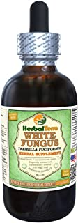 White Fungus (Tremella Fuciformis) Glycerite, Organic Dried Mushrooms Alcohol-FREE Liquid Extract 2 oz