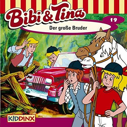 Der große Bruder audiobook cover art