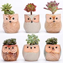 $22 Get Chenway Succulent Pots Set of 6 with Drainage Tray Owl Flower Pot Thumb Pot Set Multi-Meat Pot Mini Flower Pot to Decorate [Ship from USA Directly]