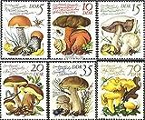 Prophila Collection DDR (RDA) Michel.-No..: 2551-2556 (Completa.edición) 1980 Hongos comestibles (Sellos para los coleccionistas) Plantas / Hongos