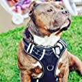 Big Dog Harness No Pull Adjustable Pet Reflective Oxford Soft Vest for Large Dogs Easy Control Harness