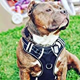 BABYLTRL Big Dog Harness No Pull Adjustable Pet Reflective Oxford Soft Vest for Large Dogs Easy Control Harness (L, Black)
