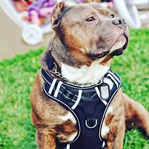 Big Dog Harness No Pull Adjustable Pet...