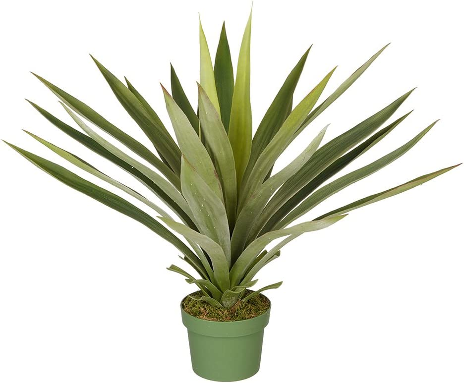 House of Silk Flowers Max 51% latest OFF Large Yucca Plant Artificial