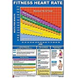 IRON COMPANY Productive Fitness Laminated Fitness Poster - Fitness Heart Rate - 24' x 36' Wall Chart for Heart Rate Training Zones During Cardio Exercise