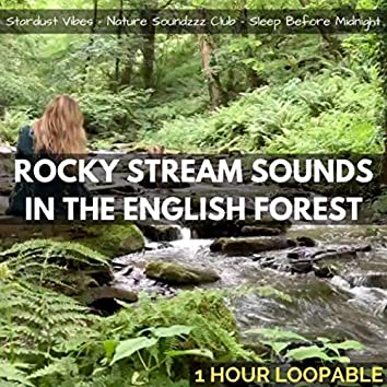 Rocky Stream Sounds in the English Forest: One Hour (Loopable)