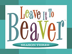 leave it to beaver season 6 episodes
