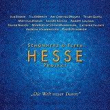 Hesse Projekt 1