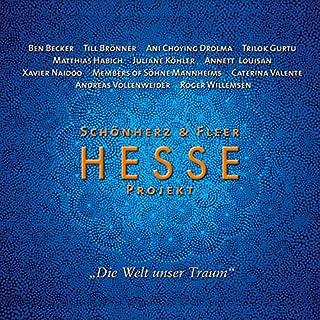 Hesse Projekt 1 Titelbild