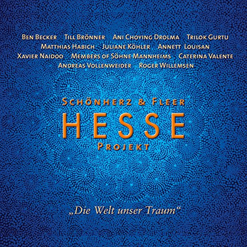 Hesse Projekt 1 audiobook cover art