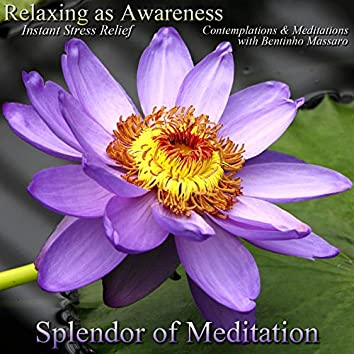 Relaxing as Awareness: Instant Stress Relief - Contemplations and Meditations With Bentinho Massaro