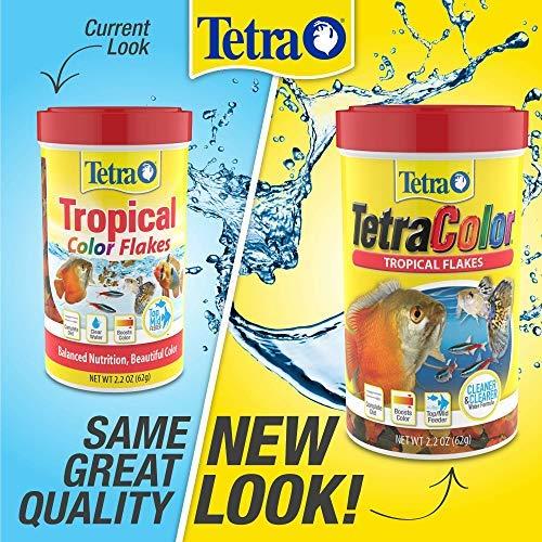Tetra 77161 Color Natural Color Enhancing Tropical Fish Flakes, 2.2 oz
