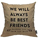 Mugod Best Friends Forever Decorative Throw Pillow Cover Case We Will Always Be Best Friends You...