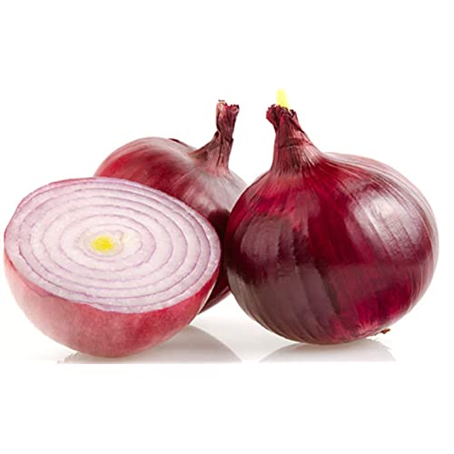 Onion Seed: Amazon com