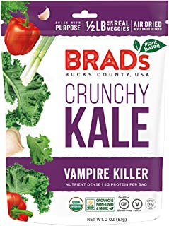 Brads Raw, Chip Kale Vamp Organic, 2 Ounce