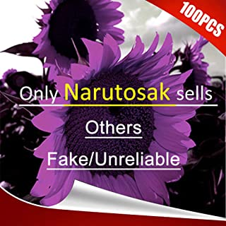 Narutosak 100Pcs Rare Purple Sunflower Seeds Beautiful Flower Home Garden Ornament Plant - Purple Sunflower Seeds